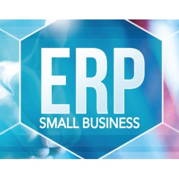 SMALL BUSINESS ERP